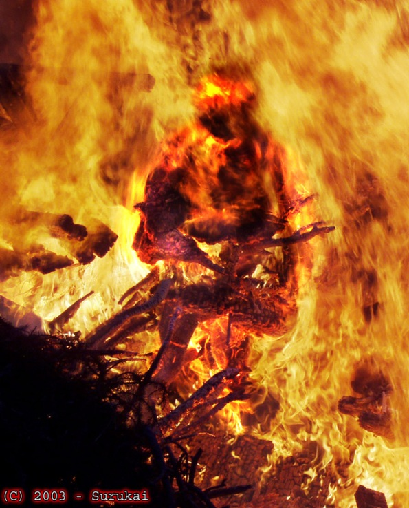 rising from the pyre